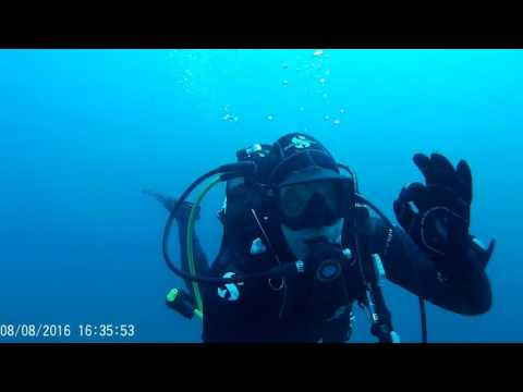 Diving in Croatia 2016 - Brela