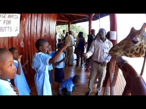 Visit to Giraffe Centre in Nairobi,  Kenya