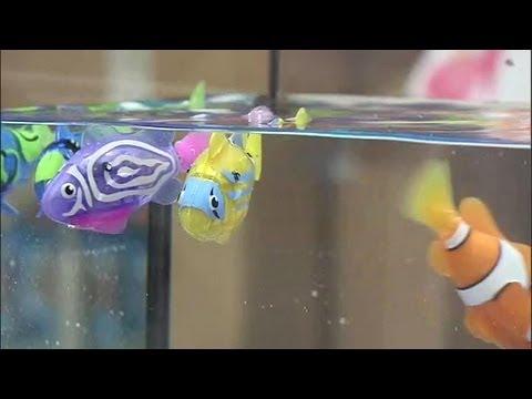 Jouets le robot fish explose toutes les ventes 08 08 for Jouet aquarium poisson