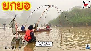 ยกยอ น้ำแม่อิงต้นปล้อง ►Fishing lifestyle Ep.238