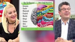 Sağ ve sol beyin nasıl çalışır?