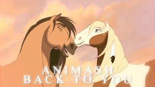 Animash - Back To You | 450+ subs & dedi
