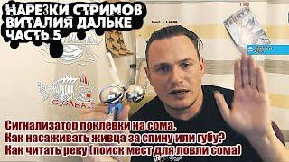 Ответы на вопросы о ловле сома Часть 5 нарезки стримов Виталия Дальке