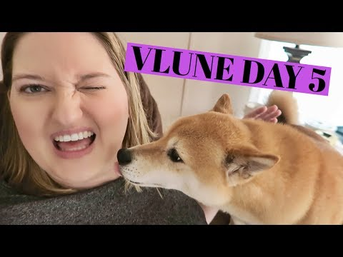 LONG A** DRAPES | VLUNE DAY 5