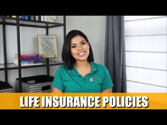 Life Insurance Policies | Are They Assets?