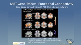 Linking Genes Brain and Behavior in Autism Spectrum Disorder