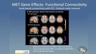 Linking Genes Brain and Behavior in Autism Spectrum Disorder