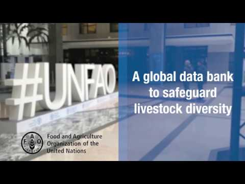 FAO Domestic Animal Diversity Information System (DAD-IS)