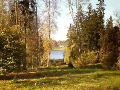 Видеофильм Осень в лесу Янкова И В - YouTube