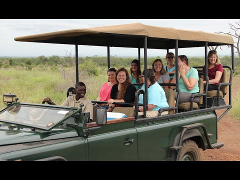 Swaziland Safari