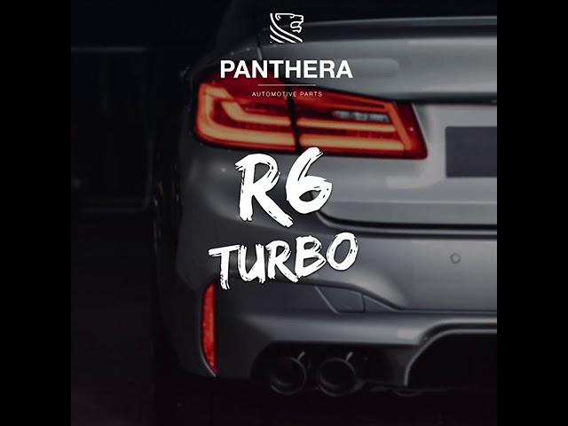 PANTHERA LEO Active Sound 4.0 - R6 Turbo