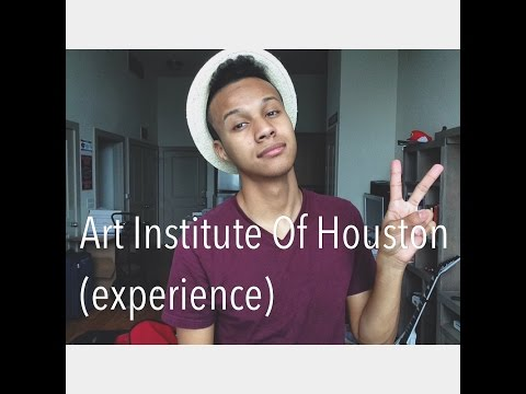 Art Institute Of Houston (Experience)