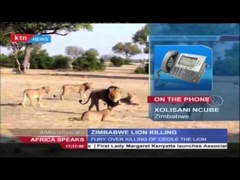 Africa Speaks: Killing of Cecil the Lion