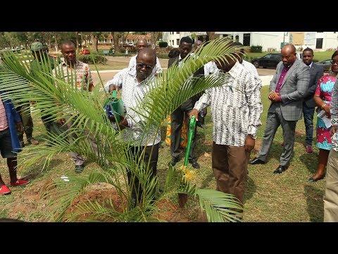 Launch of Soft Landscaping of Main University of Ghana Boulevard