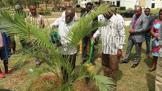Launch of Soft Landscaping of Main University of Ghana Boulevard