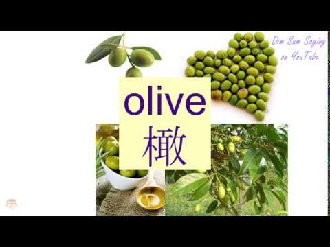 """""""OLIVE"""" in Cantonese (橄) - Flashcard"""