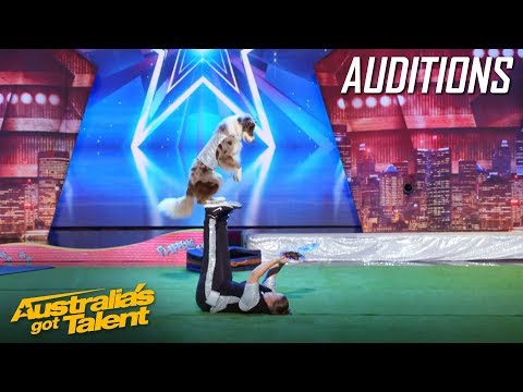 Incredible Acrobatic Dogs WOW with Flips | Auditions | Australia's Got Talent