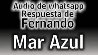 """Audio de whatsapp - Respuesta de Fernando a Georgina - """"La loca de mar azul"""""""