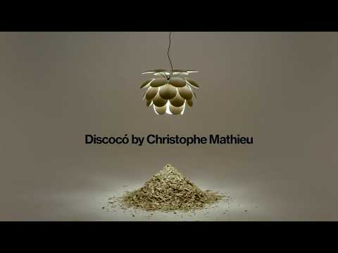 Discocó Wood: The warmth of light