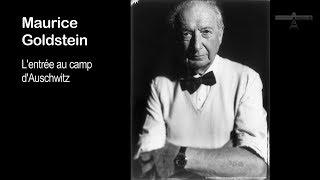 10_ entrée au camp d'Auschwitz_M. Goldstein