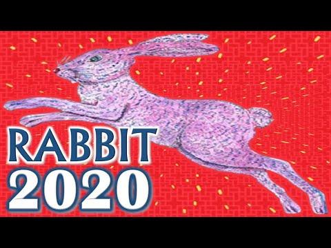 Rabbit Horoscope 2020   Born 1927, 1939, 1951, 1963, 1975, 1987, 1999, 2011