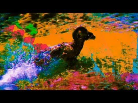 Dan Deacon: USA (Adult Swim Singles 2013)