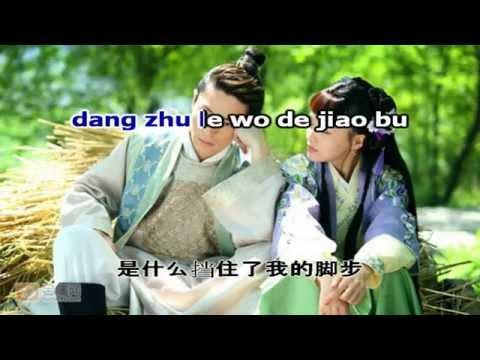 Karaoke pinyin Jin yu liang yuan 金玉良缘 | Perfect couple | Kim ngọc lương duyên - Li Qi