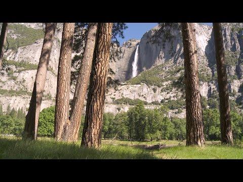 Soundscapes - Yosemite Nature Notes - Episode 29