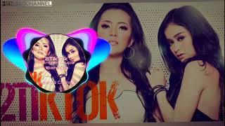 Download lagu 2TikTok - Jangan Lupa Bahagia Remix