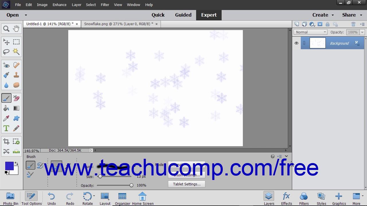 Photoshop Elements 2019 Tutotial Resetting Brush and Tool Settings Adobe  Training