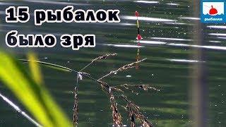 Чому 15 рибалка без карася - шокуючі мене відео і висновки!