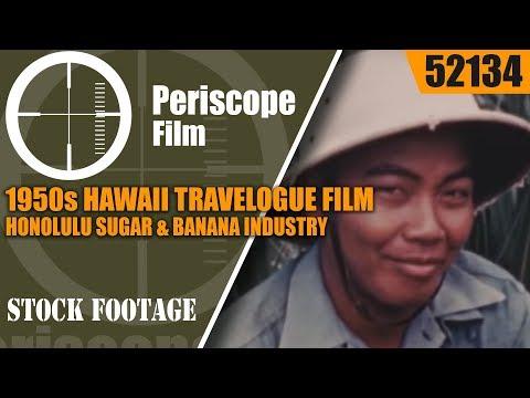 1950s HAWAII TRAVELOGUE FILM  HONOLULU  SUGAR & BANANA INDUSTRY 52134