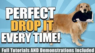 How To Train Your Dog To Drop It With Tutorials, Demonstrations, And More!