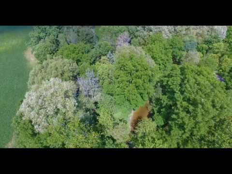 Dingman Creek Drone Footage - Zone C