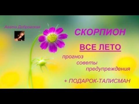 СКОРПИОН ВСЕ ЛЕТО ПРОГНОЗ СОВЕТЫ ПОДАРОК / Агата Добровская