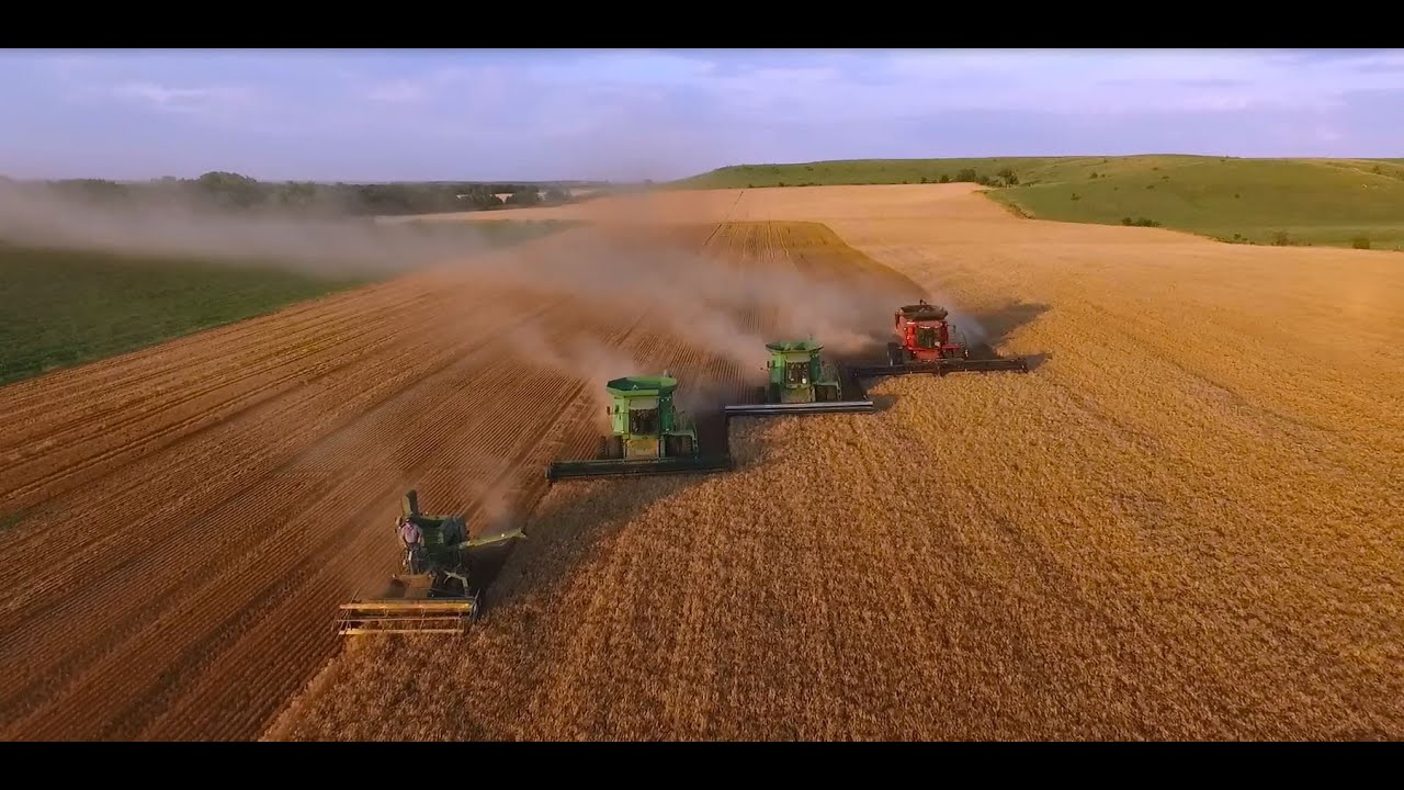 Image Gallery wheat harvest