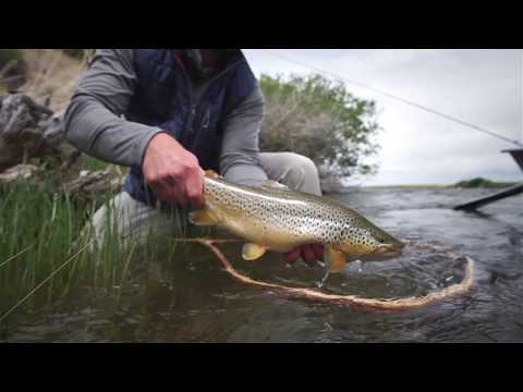 SUMMER HYPE - Fishing The Salmon Fly Hatch Montana