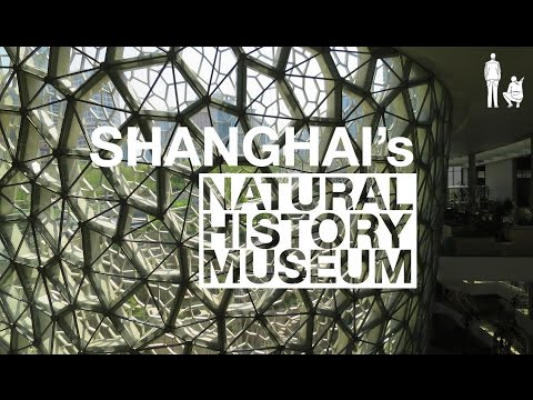 PERKINS AND WILL'S SHANGHAI NATURAL HISTORY MUSEUM