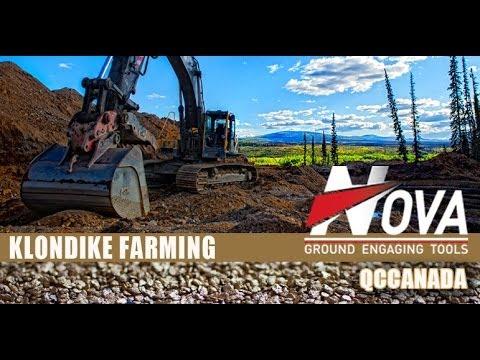 Farming for gold in the yukon -  QCC Klondike Farming