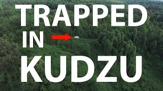 Video DJI Phantom 3 - Trapped in KUDZU  (4K) download MP3, 3GP, MP4, WEBM, AVI, FLV Juni 2017