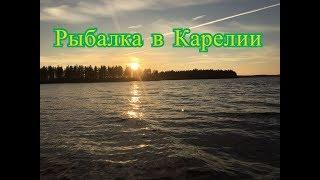 Рыбалка в Карелии на Беломорканале, Выгозеро. Ловля окуня на бортовую удочку и спиннинг. Часть 1