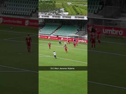 62f1bd77 lurifax support – Fotball til folket.