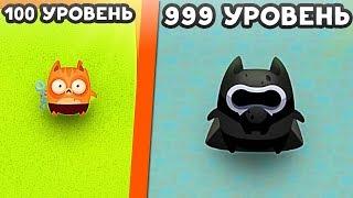 ЭВОЛЮЦИЯ КОТИКОВ! - Cat Evolution