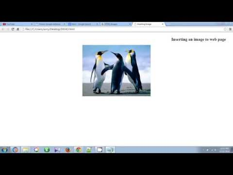 How To Insert Image In HTML Web Page Using Notepad Tutorial 2