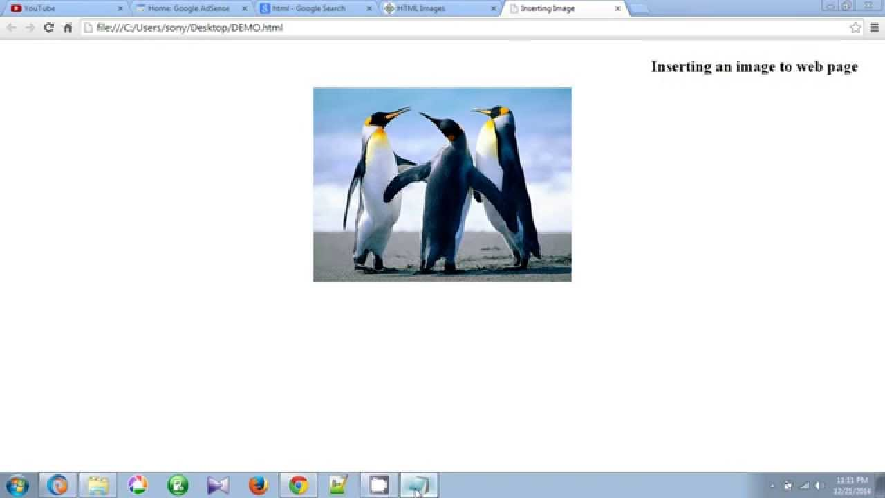 How To Insert Image in HTML Web Page Using Notepad ...