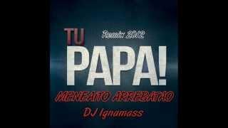 Tu Papa - Meneaito Arrebatao (Intro Mix - 102 bpm) - DJ Ignamass