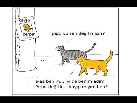 Kedi ve Köpekler Konuşabilseydi Neler Konuşurlardı!!!