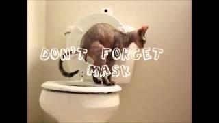 Toilet training kit for a Sphynx cat