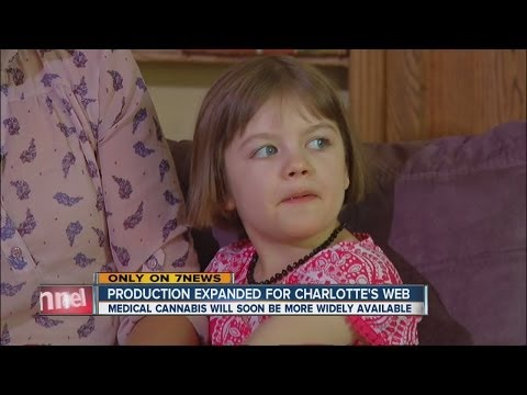 Charlotte's Web medical cannabis soon to be widely available to Colorado children