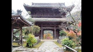 岐阜県海津市にある臥龍山 行基寺(がりょうざん ぎょうきじ)は、 お月見...